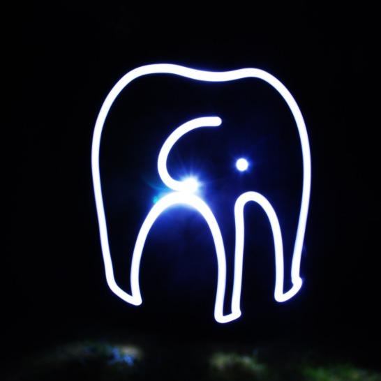 16-elephant-lumiere